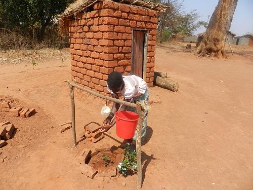 Sapling handwashing, Malawi.