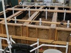 woodchip bioreactors